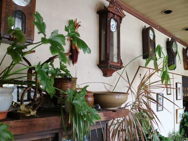 観葉植物と柱時計
