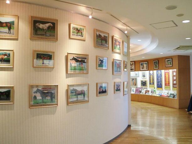 様々な競走馬の写真