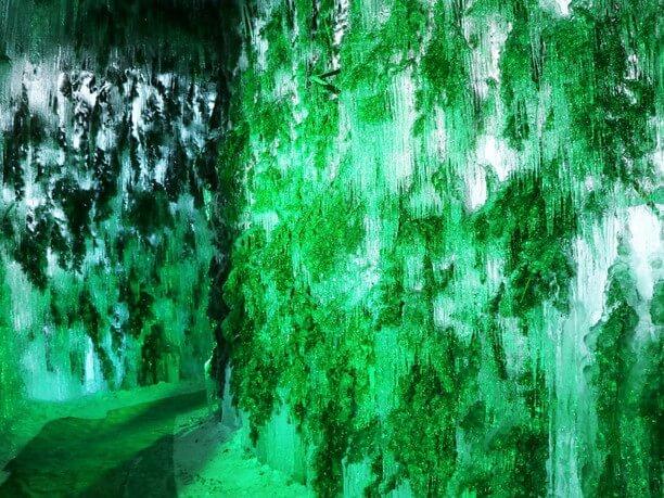 鮮やかな緑