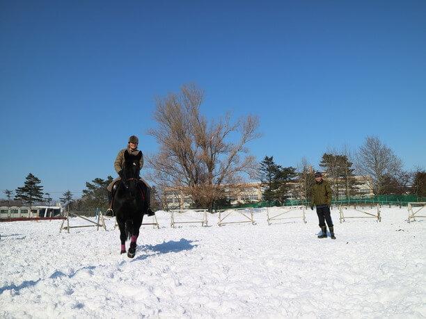 乗馬体験の様子