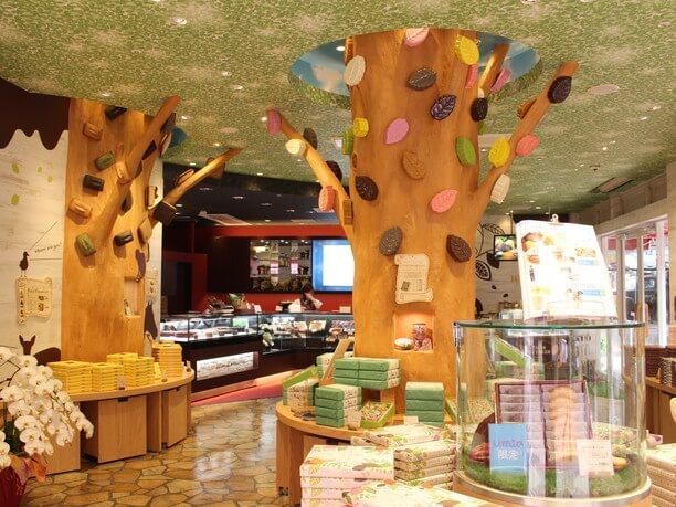 店内の大きな木