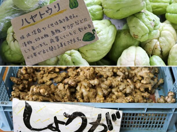 村内で育てた野菜や果物