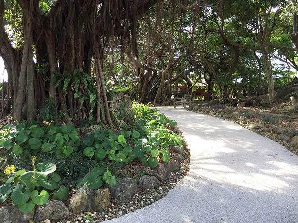 ジャングルのようでいて整然と手入れされた庭