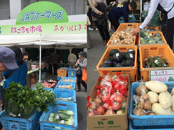 JAファーマーズの新鮮な沖縄県産野菜の販売
