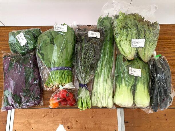 ライターが購入した新鮮野菜