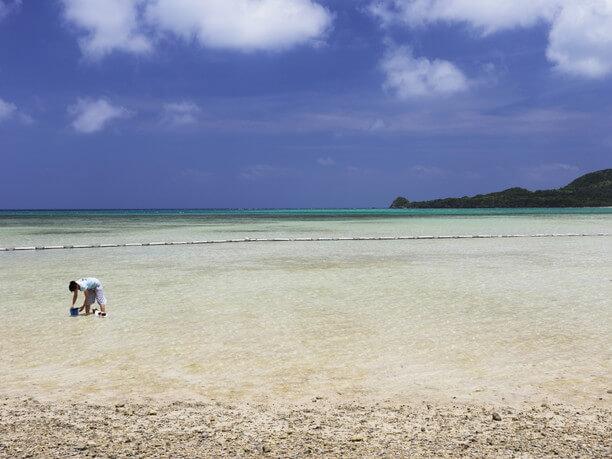 真っ白な浜辺