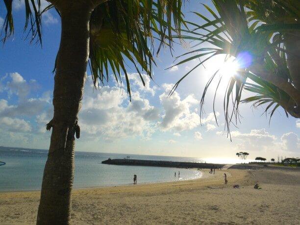 近隣の浜辺