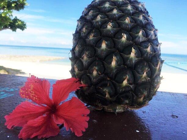 トロピカルフルーツのパイナップル