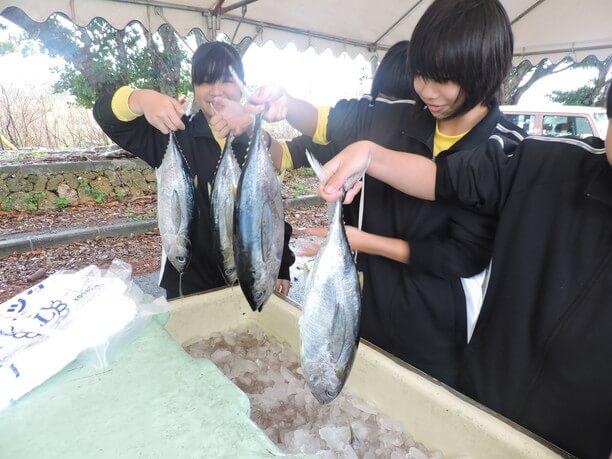 お魚券と引き換えに地元中学生がテキパキとカツオ(またはマグロ)を手渡してくれる