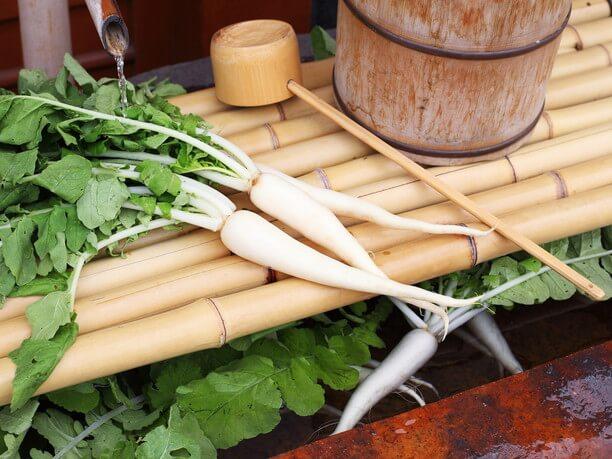 江戸時代中期に栽培が始まった亀戸大根